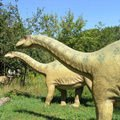 Dinosaurs Got High on Prehistoric LSD