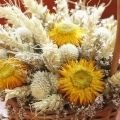 Dried flowers block vital energy