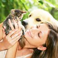 Cats - Healing Power of Dogs and Cats