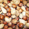 How to Clean and Roast Hazelnuts?