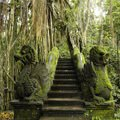 Ancient City of Man-Ape Civilization Discovered