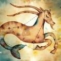 Zodiac - Capricorn 2013 - Yearly Horoscope