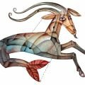 Capricorn Horoscope - Yearly Horoscope 2017 for Capricorn