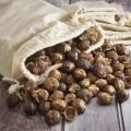 Nuts and Seeds - Soap Nuts