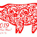 Mysteries - What Kind of Successes Will the Year of the Pig Bring?