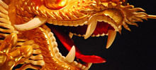 Chinese Zodiac Fire Dragon - Year of the Dragon is welcomed lavishly