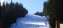 Bansko Fascinates World\'s Ski Elite