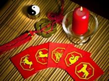 Feng Shui Horoscope 2014 for the Rat