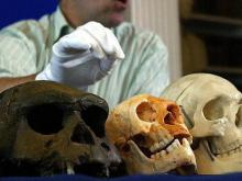 Hobbit Skeletons Prove They Were not Fictional Creatures