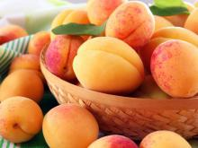Apricots are the Perfect Breakfast During Summer