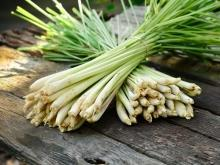 Culinary Use of Lemongrass