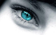 Eye color shows your talents