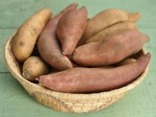 The Mexican Sweet Potato - Wild Yams