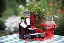 Cold-Style Blackcurrant Syrup