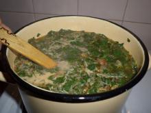 Tasty Spinach Soup with Carrots and Tomatoes