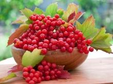 How to Make Rowan Jam