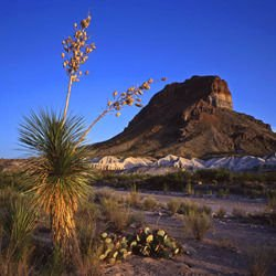 Santa Elena -  Big Bend National Park