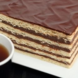 Biscuit Cake with Liquid Chocolate and Cream