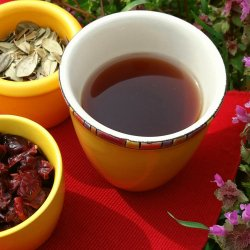 Cranberry Tea for Healthy Urinary Tract