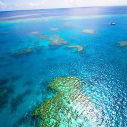 Ballygally - Great Barrier Reef