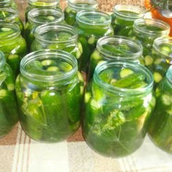 Marinated Gherkins with Dill