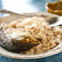Fish Meal with Mackerel