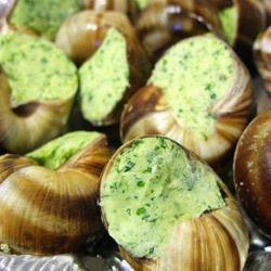 Stuffed Snails