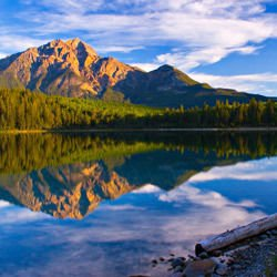Coventry - Jasper National Park