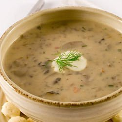 Cream of Champignon Soup