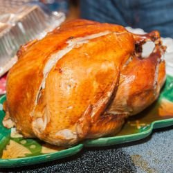 Retro Stuffed Turkey