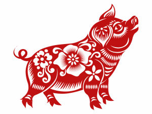 What the Year of the Pig Will be Like for you and Loved Ones
