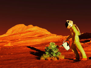 Smart Seaweed is the Key to Life on Mars!