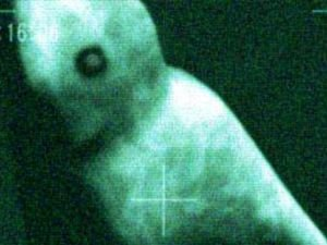 Mysterious Humanoid Photographed in Antarctica