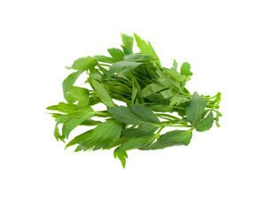 Lovage spice
