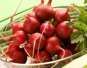 Radishes Cleanse the Kidneys