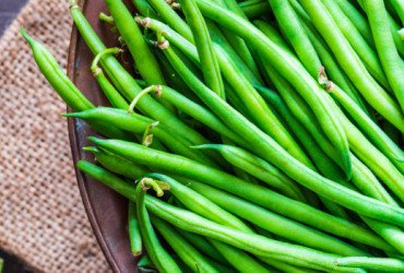 How to Store Green Beans?