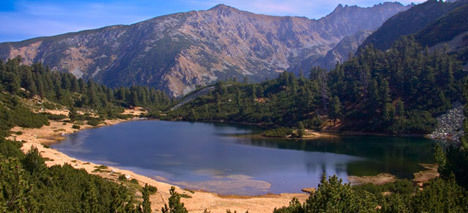 Pirin National Park can not become all in a protected area, like the mayors of Bansko and Razlog