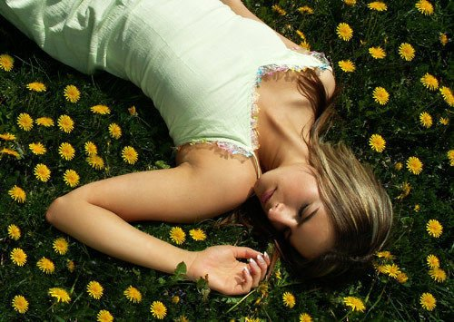 What impact flowers have on Dreams
