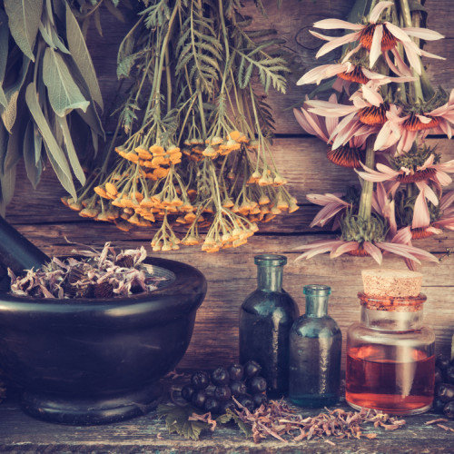 What Dreams of Various Herbs and Spices Portend