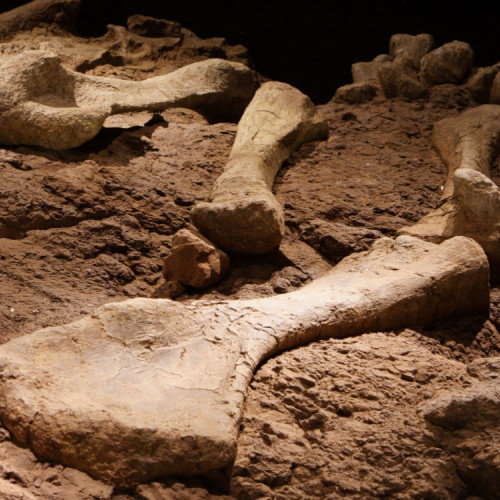 The most important Archeological finds of the XXI century