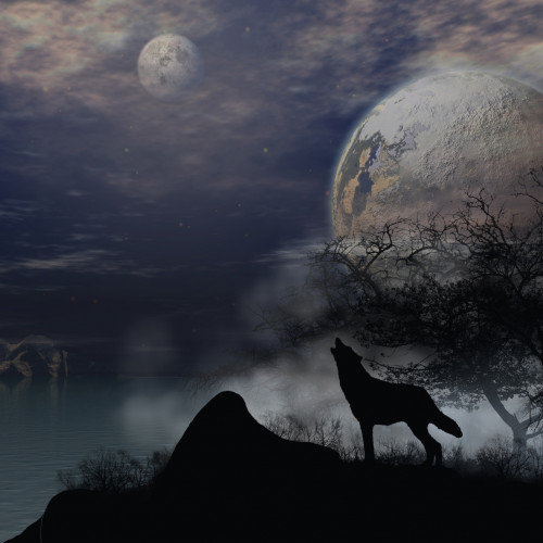 If you Dream of Wolves, Prepare for the Following