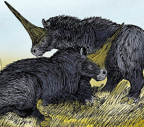 Unicorns did Exist! They Lived on Earth Alongside us