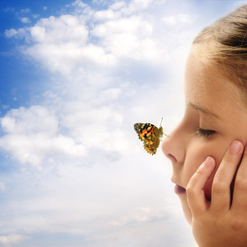Meaning of Butterflies in Dreams