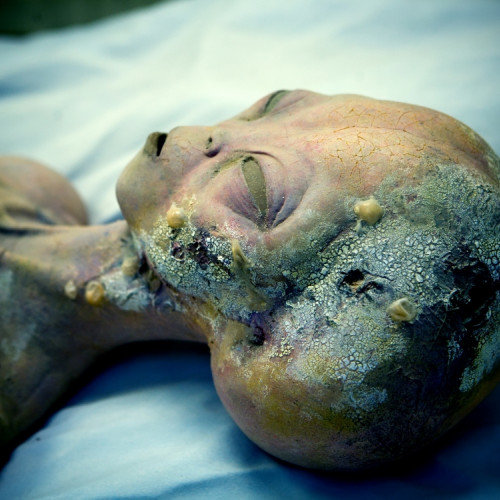 Extraterrestrial Mummy Found in Germany