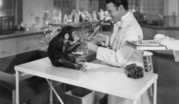 Man Monkey Lab