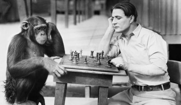 Man Monkey Chess